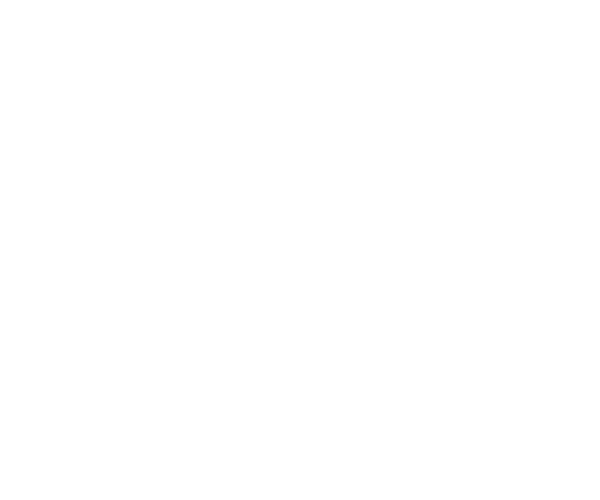 Diamond Heavy Haul Logo
